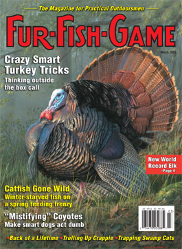 March 2009 Cover - Turkey