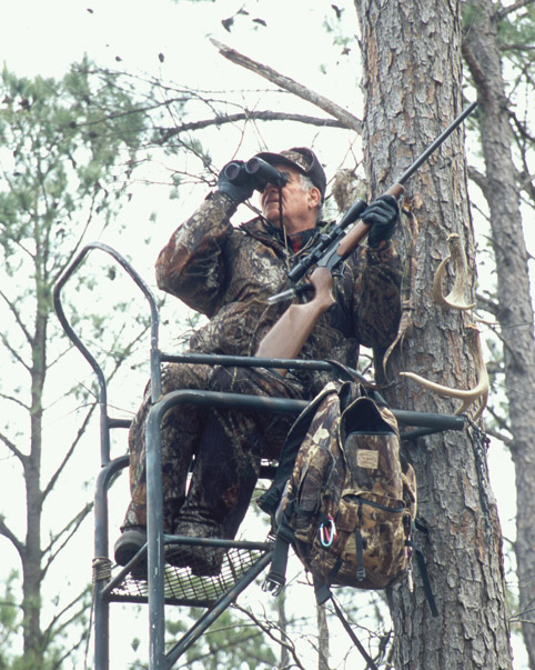 Treestand hunting