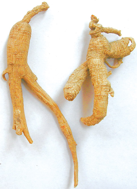 Woods Simulated Ginseng Root