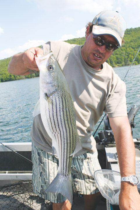 Fisherman with Striper