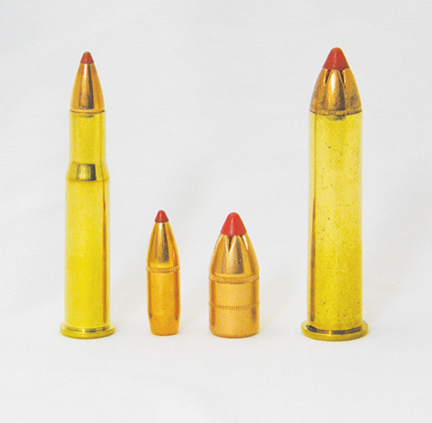 .30-.30 and .45-70 with leverevolution tip
