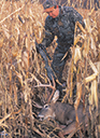 Deer Hunting Article