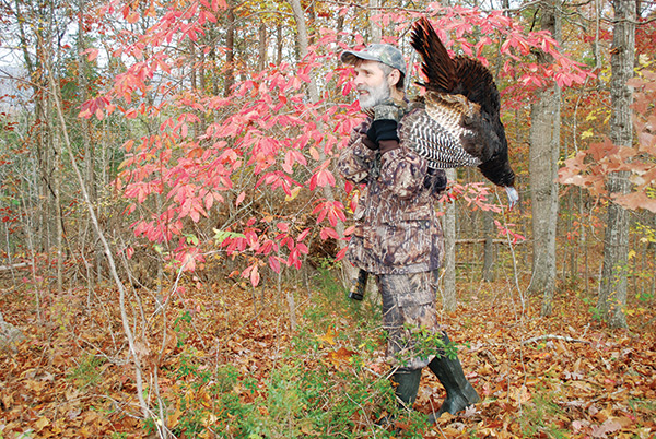 hunting turkey in the fall woods