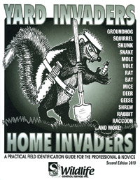 Yard Invaders - Home Invaders