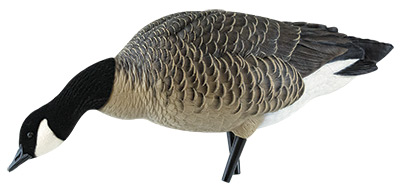Avian-X Decoys