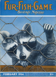 February 1934 raccoon