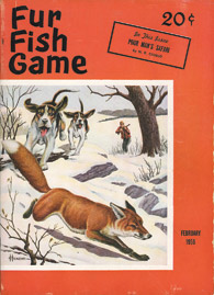 February 1956 hounds chasing fox