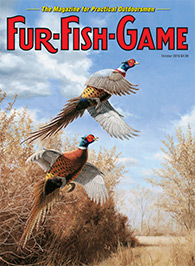 october 2016 pheasants