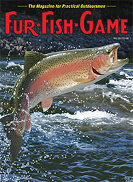 may 2017 leaping rainbow trout