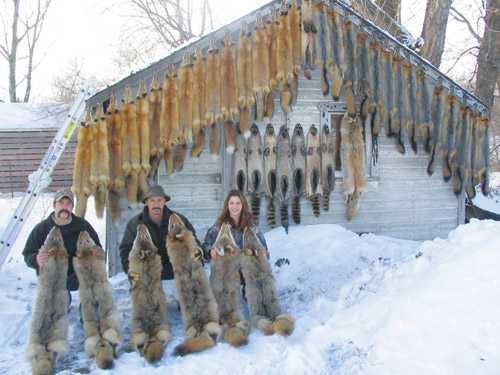 Fur fish game reader trapline photos for Fur fish and game