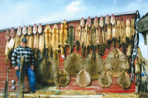 Fur fish game the hunting fishing fur trapping for Game and fish wy