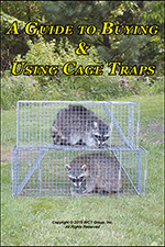 A guide to buying and using cage traps