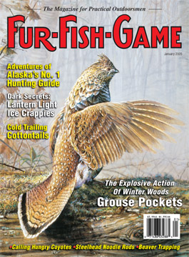 BackIssues/2005/January2005Cover.jpg