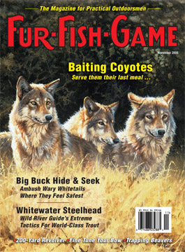 BackIssues/2005/November2005Cover.jpg