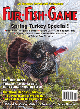 marchcover2011.jpg