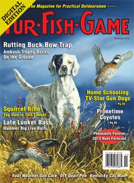 d-novembercover2012.jpg
