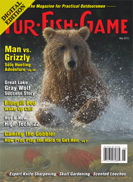 d-maycover2013.jpg