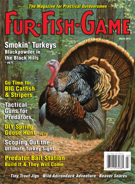 marchcover2013.jpg