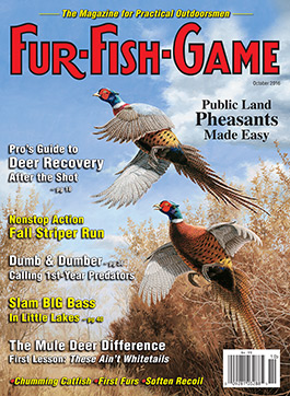 octobercover2016