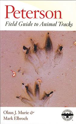 Animal_Tracks_new_250