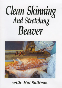 Beaver_Skinning_Vid.jpg
