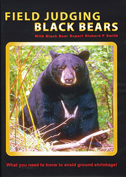 Field-Judging-bears-DVD.jpg